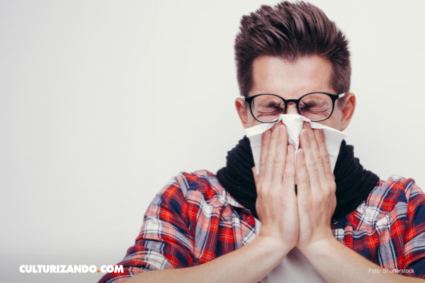 10 datos curiosos sobre los estornudos que seguro no sabías