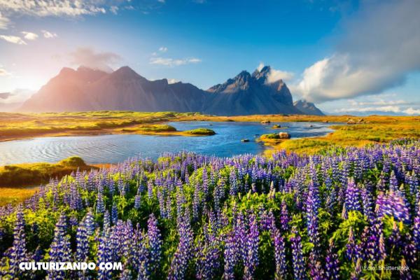 Trivia: 10 cosas que no sabías sobre Islandia