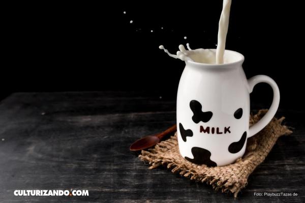 7 comunes mitos sobre la leche