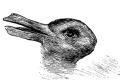 ¿Pato o conejo? Lo que veas dirá mucho sobre ti