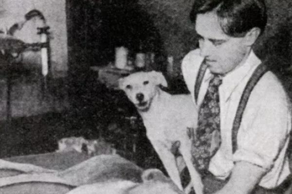 El científico que resucitaba perros y no le dejaron hacerlo con humanos