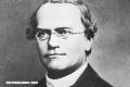 Gregor Mendel, el brillante e incomprendido científico que cambió la historia (+Datos)