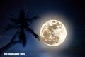 Conoce 10 efectos que produce la luna llena