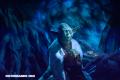 Fanáticos de Star Wars enloquecen con estas criaturas igualitas a Yoda