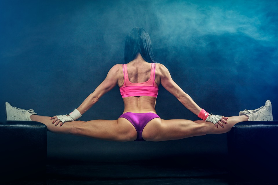 Cuántos Músculos Tiene El Cuerpo Humano El Aragüeño