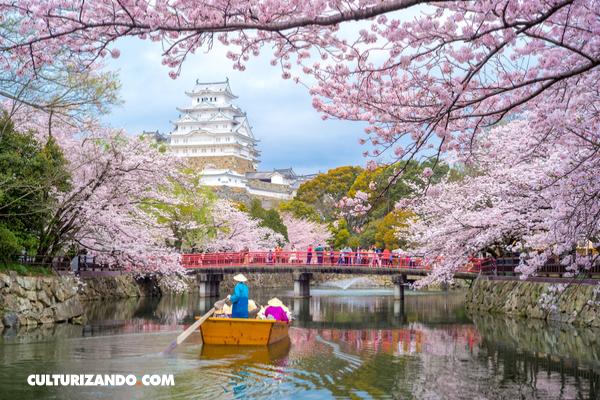 Ruta 360: Lo que tienes que saber sobre Japón