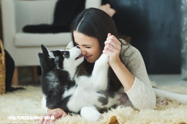 ¿De dónde proviene la lealtad entre caninos y humanos?