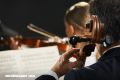 ¿Qué tanto sabes de una orquesta sinfónica?