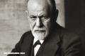 El loco amor de Sigmund Freud por los perros