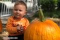 ¿Por qué asociamos calabazas con Halloween?