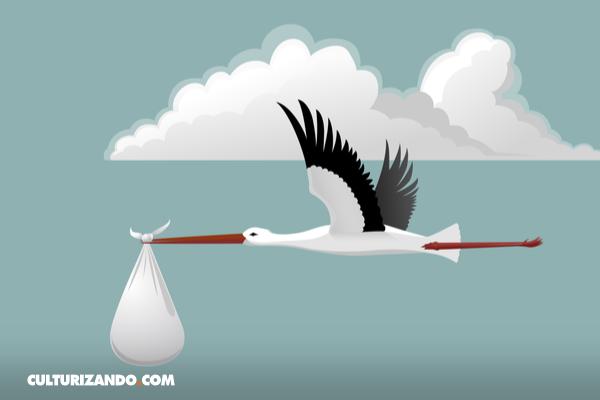 El mito de la cigüeña, el ave que parió al mundo