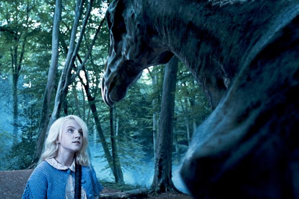 Trivia: ¿Puedes identificar todas estas criaturas de Harry Potter?