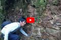 Hallan en la jungla de Perú una ciudad perdida perteneciente al Imperio Inca