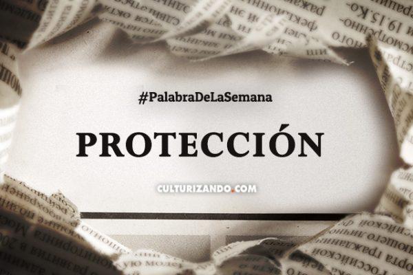 Palabra de la semana: «Protección» (+Frases)