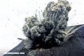 La increíble historia del Krakatoa