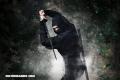 5 datos interesantes acerca de los ninjas