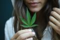 Marihuana vs Consumidor ¿quién es el creativo?