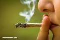 ¿La marihuana puede causar la muerte?