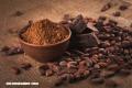 De la cerveza al chocolate, así fue el curioso descubrimiento del cacao