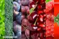 Trivia: ¿Eres capaz de identificar estas frutas y verduras?