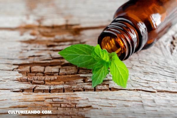 Homeopatía, curar enfermedades con los propios síntomas