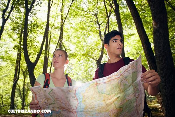 ¿Cuál es la diferencia entre bosque, selva, jungla, parque, floresta, arboleda?