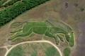 5 extrañas imágenes vistas desde Google Maps