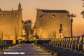 En Imágenes: El majestuoso Templo de Luxor
