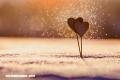 ¿Qué es el amor verdadero? El budismo lo responde con 4 palabras