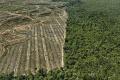 The Anthropocene Project: cuando el arte nos advierte que estamos destruyendo el planeta