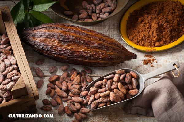 De cacao a chocolate, ¿cuál es el proceso?