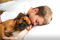 ¿Dormir con tu mascota, un hábito sano o perjudicial?