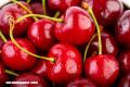 La cereza, ¿una súper fruta?