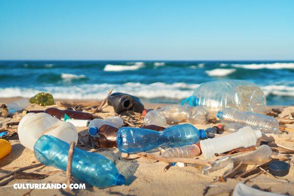 7 datos espeluznantes sobre la contaminación del plástico