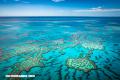 Sumérgete en la Gran Barrera de Coral australiana con estas fotos