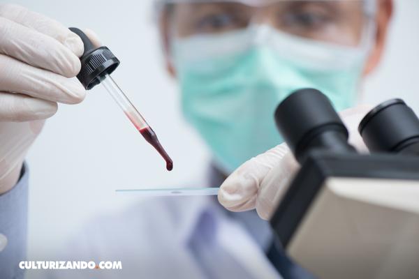 ¿Sabías que existe la 'sangre dorada'?  Descubre de qué se trata