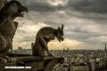 Gárgolas: Los demonios de la Edad Media