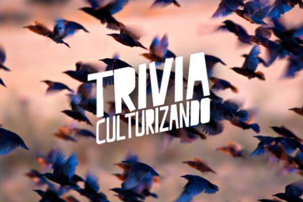 Trivia: ¿Sabes mucho acerca de aves? ¡Averígualo!