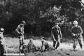 """La historia detrás del """"Club del Uranio"""", el grupo nazi encargado de la bomba atómica"""