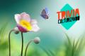 Trivia: ¿Te gusta la naturaleza?