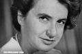 ¿Quién fue Rosalind Franklin?, la mujer que ayudó a descubrir la estructura del ADN