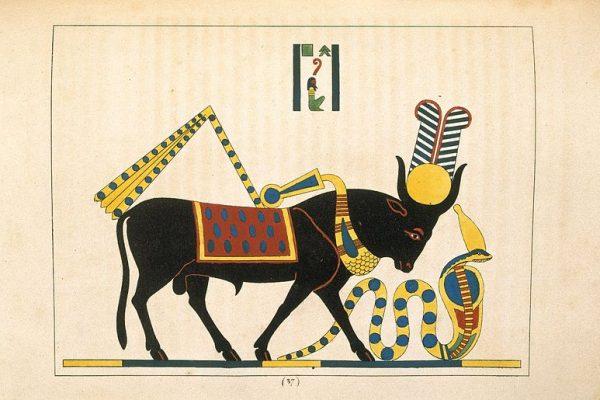 ¿Conoces la fascinante leyenda de Apis, el toro solar?