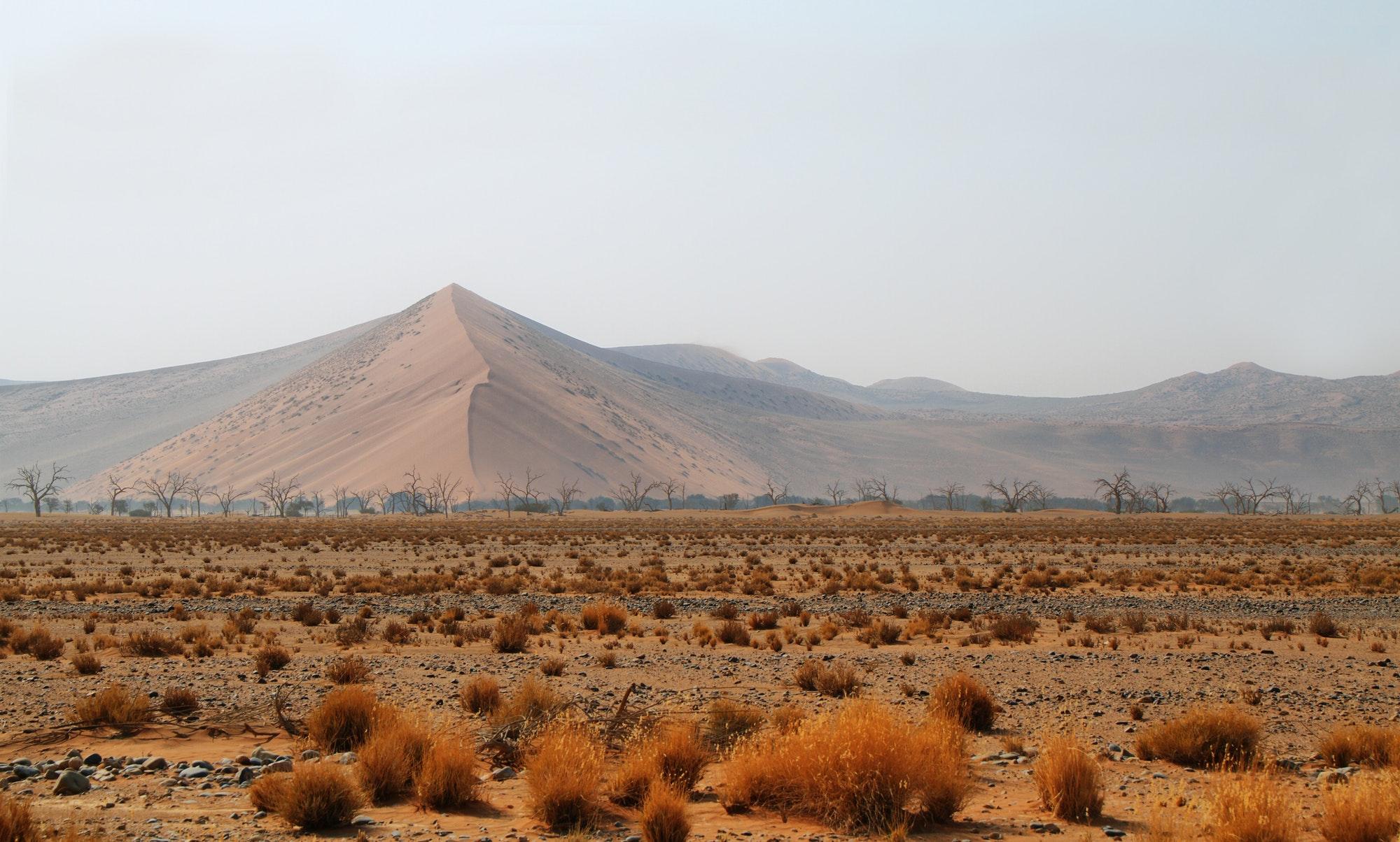 Dune in Namib desert