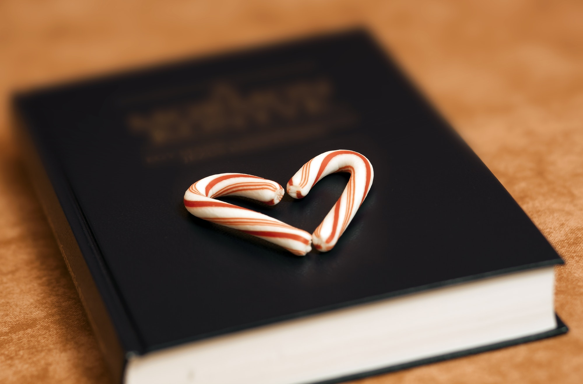 Bible book with love