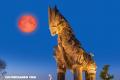 La mujer que predijo el ataque del caballo de Troya, pero nadie le creyó