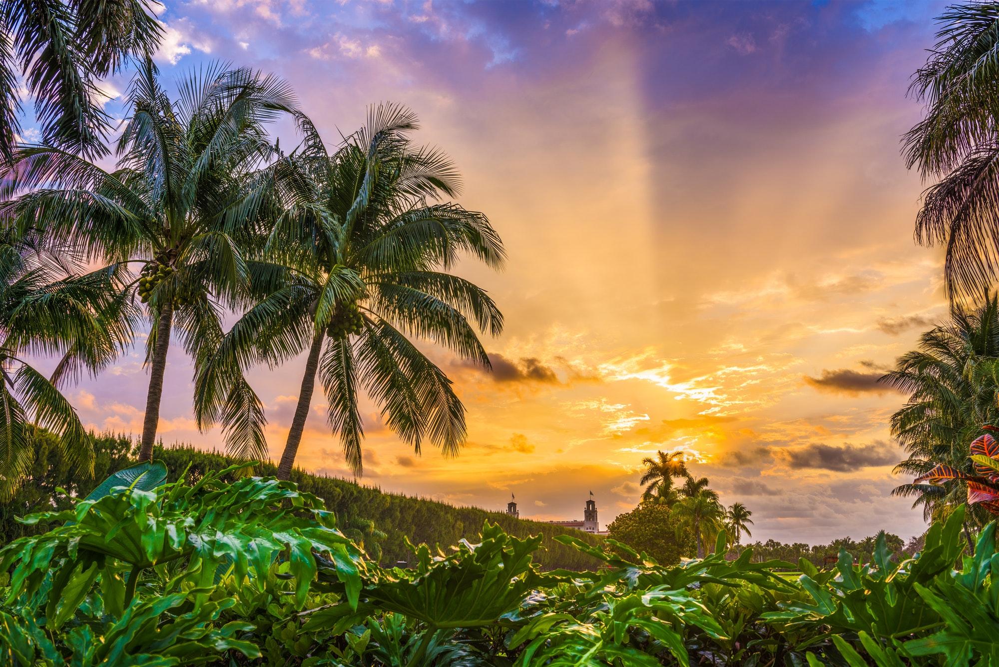 Florida, USA Sunrise