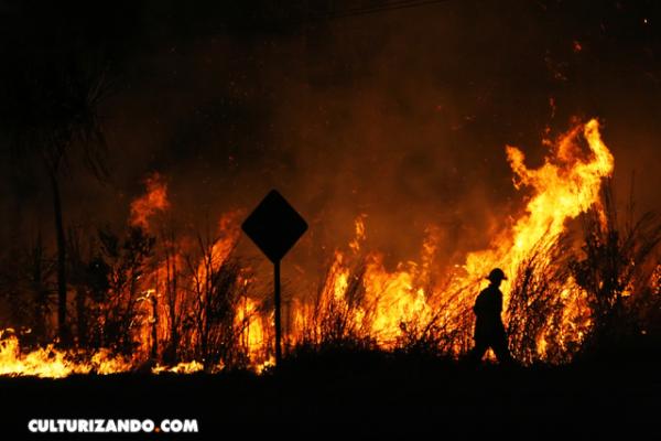 Sequía y escasas lluvias originaron incendios en Australia