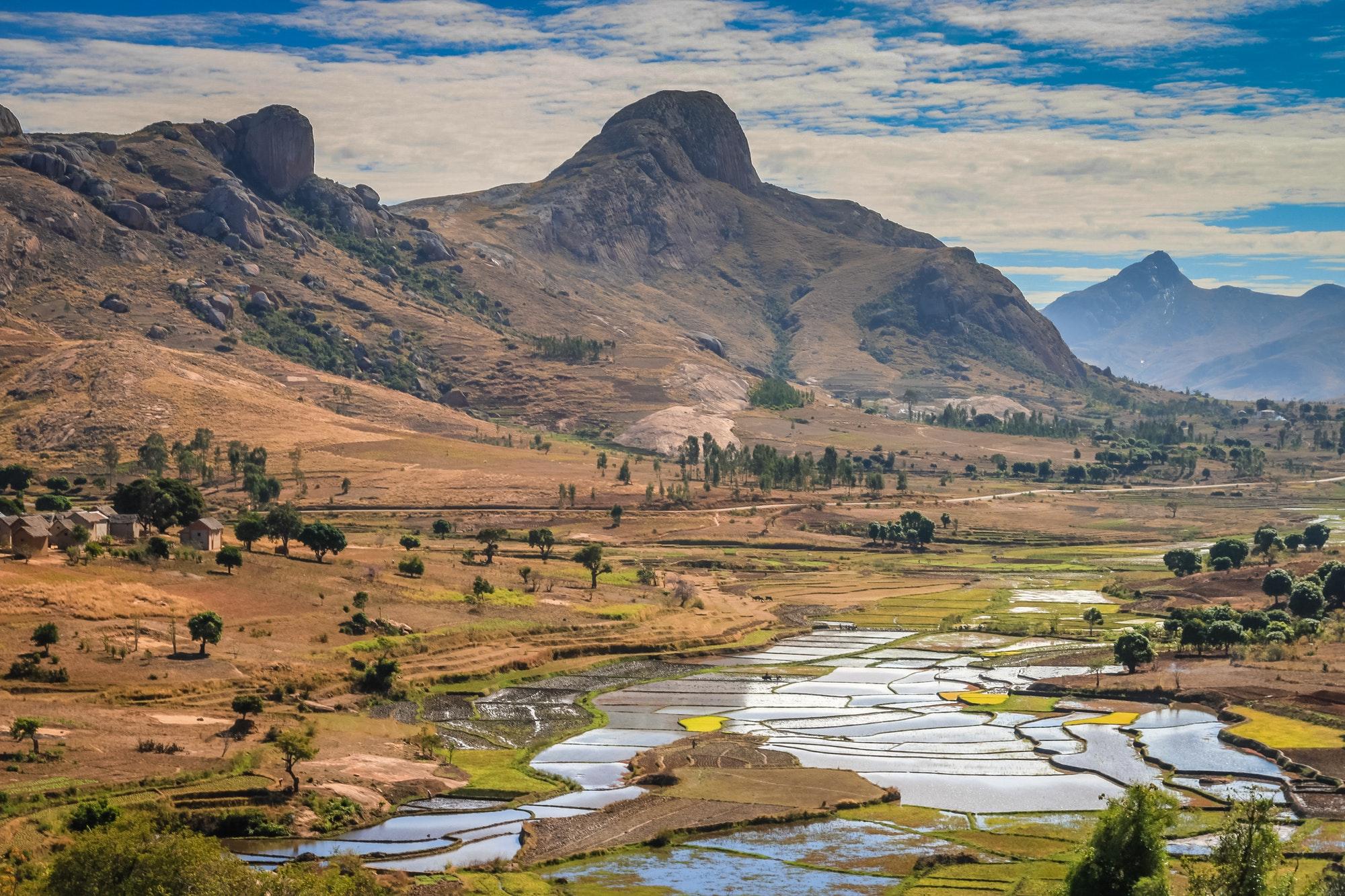 Ricefields of Madagascar