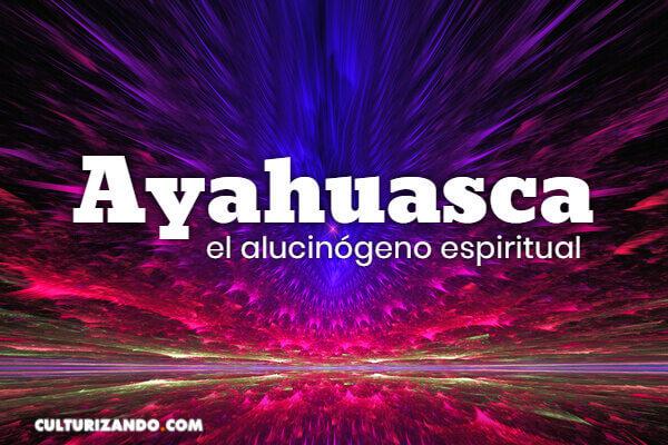 ¿Qué es la ayahuasca? Conoce su uso en el arte y como droga terapéutica
