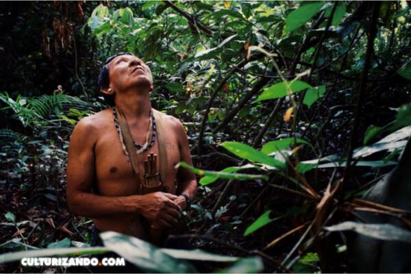 Cuatro líderes indígenas son asesinados al mes en América Latina por defender sus derechos